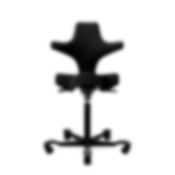 HÅG Capisco ergonomischer Bürostuhl