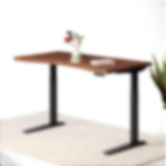 Jarvis Hardwood Standing Desk