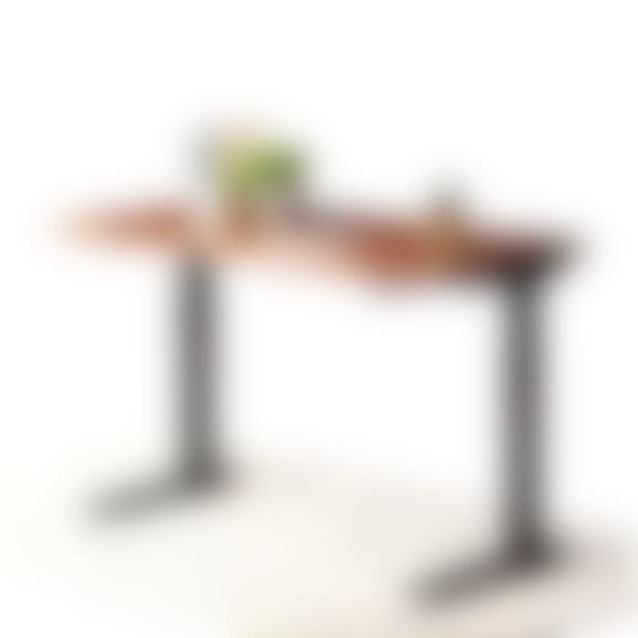 fully jarvis hardwood standing desk sealed natural maple with hanging lemons white frame