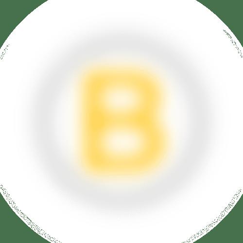 B Corp logo image